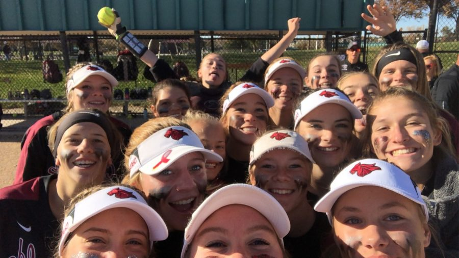 Softball selfie!